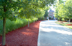 SecondHarvest® Vibrant Red Woodmulch