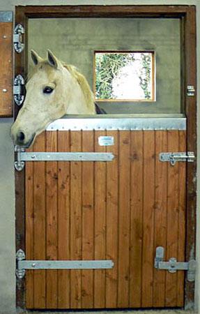 Standard Size Stable Door